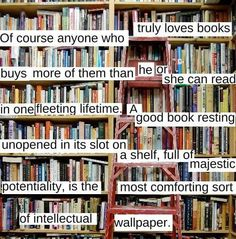 A good book resting unopened in its slot on a shelf, full of majestic potentiality,is the most comforting sort of intellectual wallpaper.