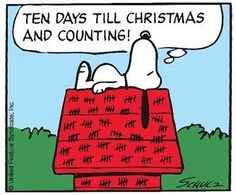 peanuts christmas countdown panels for 2015 - Yahoo Image Search Results Christmas Comics, Days To Christmas, Peanuts Christmas, Charlie Brown Christmas, Charlie Brown And Snoopy, Christmas Ideas, Merry Christmas, Snoopy Images, Snoopy Pictures