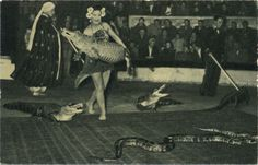 At the circus. vintage collectable card