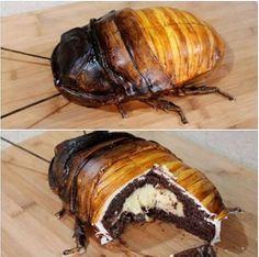 Madagascar Hissing Cockroach Cake with Boston Creme Filling gruesome halloween food Dessert Halloween, Halloween Dinner, Halloween Food For Party, Halloween Treats, Scary Halloween Cakes, Spooky Treats, Bug Cake, Crazy Cakes, Girl Cakes