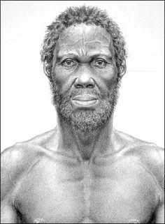 Homo sapiens sapiens - 200000 yb Africa; 90000 yb Azia; 40-50000 yb Europe; 50000 yb Australia; 7-35000 yb America