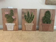 Cactus garden string art suculent string srt home decor