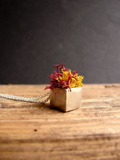 Red Moss Planter Fall Cube Necklace Sterling Silver Pendant