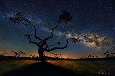 Fotografía Sombras Chinescas por César Vega en 500px