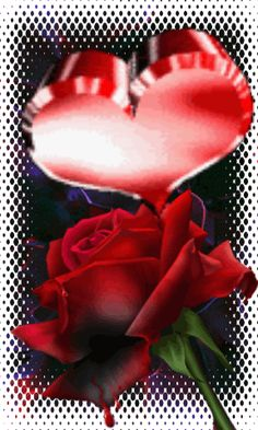 image Beautiful Love Pictures, I Love You Pictures, Love You Gif, Pictures Of Christ, Love You Images, Beautiful Gif, Beautiful Roses, Good Morning Greetings, Good Morning Wishes