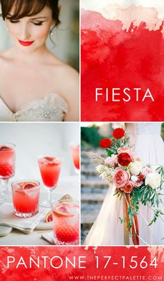 Pantone - Fiesta - 17-1564   Vibrant, festive, and absolutely radiant, Fiesta is the kind of color that works well with soft neutrals that balance it's boldness out. For instance, a soft blush, a lovely shade of ivory, a soft sage, those are the kind of colors that I like to see paired with Fiesta when it comes to weddings and parties.