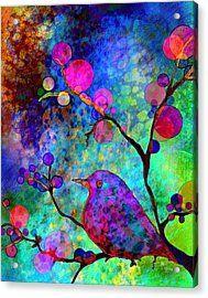 Enchantment Acrylic Print by Robin Mead