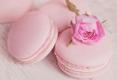 "mochi-bunnies: "" gentle pink macaroons with rose by aleksa torri """