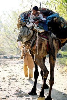 Afghanistan, Refugee Crisis  November 2001