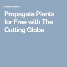 The Cutting Globe is a special reusable plant propagator, which works by stimulating your plant's stem into producing new roots. New Roots, Propagation, Globe, Garden, Plants, Free, Speech Balloon, Garten, Lawn And Garden