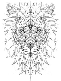 Beautiful Raja of the Jungle, I love the detail and the feathers #lioness