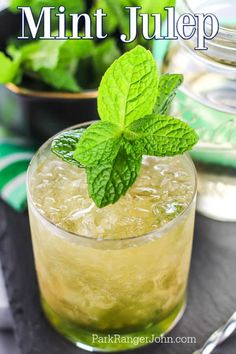 Classic Mint Julep Recipe, Drinks Alcohol Recipes, Cocktail Recipes, Drink Recipes, Kentucky Derby Drinks, Crown Party, Mango Margarita, Shot Recipes