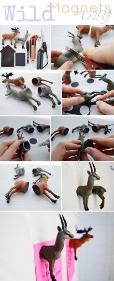 Wild Animal Magnets