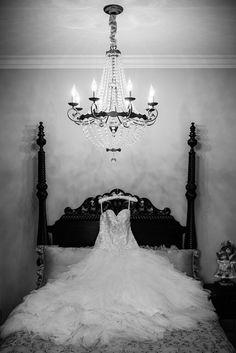 Mermaid Wedding, Family Portraits, Engagement, Wedding Dresses, Photography, Home Decor, Fashion, Family Posing, Bride Dresses
