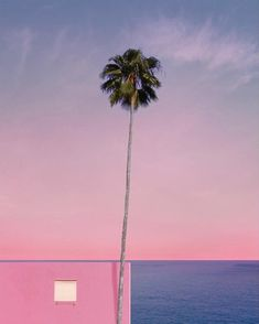 this isn't happiness™ (Mulhollandwave, Andria Darius Pancrazi), Peteski Photo Wall Collage, Picture Wall, Pink Sunset, Minimalist Photography, Jolie Photo, Pink Aesthetic, Aesthetic Pictures, Great Photos, Aesthetic Wallpapers