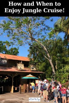 Jungle Cruise is one of the most classic Walt Disney World attractions. Today, I will give you some background as well as the best time of day to enjoy this Magic Kingdom ride! #JungleCruise #MagicKingdom #DisneyWorldTips #Adventureland