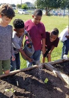 A school garden is a wonderful way for students to physically connect with nutrition education, understand the process of growing healthy foods, and recognize environmental stewardship.