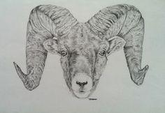 SALE Ram Head Drawing (Original) by MeganHumphriesArt on Etsy