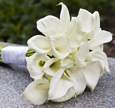 My favorite, White Calla Lillie's. Simplistic yet Beautiful :)