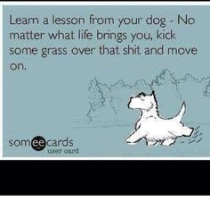 "E-Card: Dog Humor: ""Learn a lesson from your dog - No matter what life brings you, kick some grass over that sh*t and move on. Motivacional Quotes, Great Quotes, Quotes To Live By, Inspirational Quotes, Beer Quotes, Dog Quotes Love, Wisdom Quotes, Quotes On Dogs, Quotes For Work"