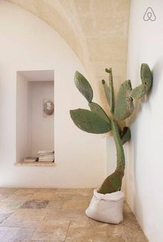 Room decoration using cactus is never ending. Starting from the real cactus, cactus displays, to the cactus made of stone. Methods, planting media, and pots used to plant cactus and important infor… Interior Exterior, Exterior Design, Interior Architecture, Stone Interior, Interior Plants, Ibiza, Interior Minimalista, European Home Decor, Cacti And Succulents