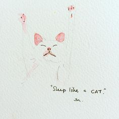 """""""Sleep like a (fat) cat"""" #quickpainting #cat #sleep #funny #artbyjvn #art_we_inspire #watercolor #illustrationoftheday #illustration #instadaily #instaart #animal #doodle #instagramers #instaartist #happy #drawdaily #funnycat #cutecat"""