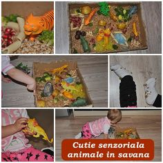 "Cutie senzoriala ""Animale in savana"" Indoor Activities For Toddlers"
