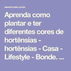 Aprenda como plantar e ter diferentes cores de hortênsias - hortênsias - Casa - Lifestyle - Bonde. O seu portal