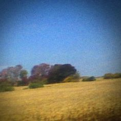 Benji is the sixth studio album by American indie folk act Sun Kil Moon, released on 11 February 2014 on Caldo Verde Records. Mark Kozelek, Will Oldham, Wall Of Sound, Pochette Album, I Love My Dad, Album Of The Year, Music Album Covers, Best Albums, Top Albums
