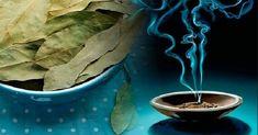Lagerblad ger smak åt många av våra favoriträtter, lugnar sinnet och gynnar kroppen. Lagerträdet har använts sedan antiken av kulturer vid Medelhavet, som fortfarande använder det i samma syfte idag. Bortom sina välkända slemlösande egenskaper kan bladen erbjuda en rad andra fördelar för kropp och sinne. Det är en viktig krydda i köket som symboliserar …