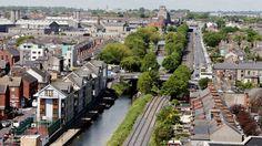 Drop in Dublin tree-planting despite report on benefits of urban greenery Tree Watch, Irish News, Trees To Plant, Dublin, Paris Skyline, Greenery, Urban, City, Plants