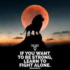 Fight Alone 🦁 . Lion Quotes, New Quotes, Inspirational Quotes, Hindi Quotes, Motivational Quotes, Deep Meaningful Quotes, Hd Wallpaper Quotes, Motivational Wallpaper, Millionaire Mentor Quotes