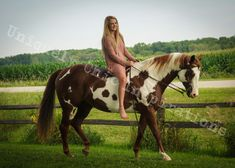 Check out the photos from Uniquely Chic Inspirations by Crystal Engstrom Horses, Crystals, Chic, Photos, Animals, Inspiration, Shabby Chic, Biblical Inspiration, Elegant