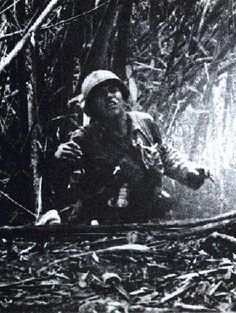 Hamburger Hill, Vietnam War