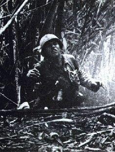 Hamburger Hill, Vietnam War