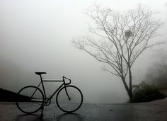 cycling in the fog Cool Pictures, Beautiful Pictures, Go Ride, Bike Photography, Bicycle Design, Bicycle Art, Fixed Gear Bike, Bike Style, Bike Life