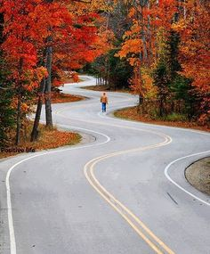 Autumn Road, Wisconsin, USA --in Door County--SUCH a fun road to drive!
