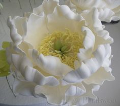 gumpaste peony with stamens.  I hope this link works.  My computer isn't letting me retrieve links  for some reason today.