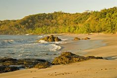 Top 5 Reasons to Visit Costa Rica during The Green Season!!! New article highlighting why its great to visit Costa Rica and Playa Santa Teresa during this time. Waves, Discounts & More!  www.hotelcasachameleon.com