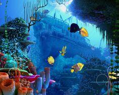 Sunken ship coral reef