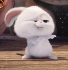 The secret life of pets Cute Disney Wallpaper, Cute Cartoon Wallpapers, Cartoon Pics, Snowball Rabbit, Cute Bunny Cartoon, Rabbit Wallpaper, Secret Life Of Pets, Cute Characters, Cute Art