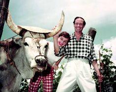 Audrey Hepburn, née Hepburn-Ruston, of the Baroness Van Heemstra (1929-1993) & and Mel Ferrer