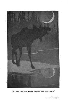 The Haunters of the Silences: A book of animal life, Charles G. D. Roberts, illustrations by Charles Livingston Bull, 1907.