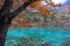 Valle Jiuzhaigou, China.  También conocido como el valle de las nueve aldeas, este parque nacional se encuentra al norte de la provincia de Sichuan. Su superficie es de 72.000 hectáreas y es conocido por sus cataratas de varios niveles, lagos de colores y picos montañosos nevados. Se extiende desde los 2000 hasta los 4500 metros sobre el nivel del mar.