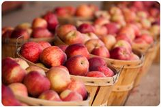 Healthy Budget, Healthy Diet: How to Spend Less for Healthier Food | | The Krazy Coupon Lady