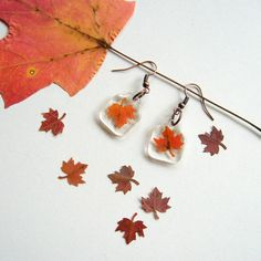 Real Autumn Maple Leaf Woodland Earrings by enchantedplanet, $15.00