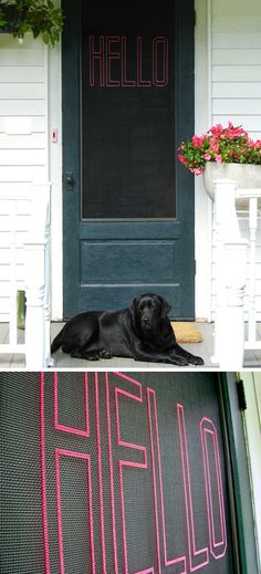 Cross stitched screen door, I think I might do this on our back door and put something like NO POOP BOOTS in the house!