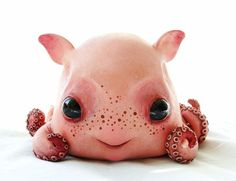 baby dumbo octopus cute monster doll creature character design model figurine WANT Monster Dolls, Toy Art, Cute Monsters, Little Monsters, Gremlins, Cute Creatures, Magical Creatures, Cute Fantasy Creatures, Strange Creatures