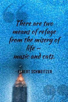 Inspirational cat quote about our love for cats. Great quote from Albert Schweitzer.