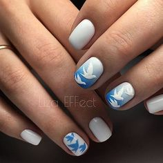 Beautiful gradient nails Bird nail art Blue and white nails Gradient manicure for a short nails Hardware nails Ideas of gentle nails Nails ideas 2020 Ombre nails with a picture Nail Art Design Gallery, Best Nail Art Designs, Nail Art Kit, Gel Nail Art, Gradient Nails, Fun Nails, Polygel Nails, Nail Polishes, Blue And White Nails